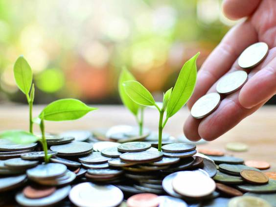 coins growth up to profit concept investment and finance