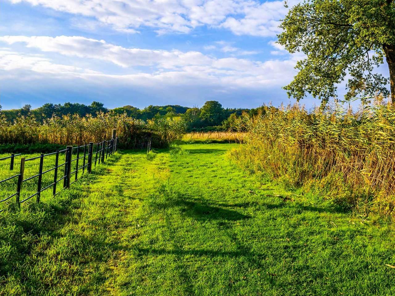Rural farm land nature landscape
